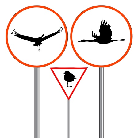 squawk: birds traffic signs isolated on white background, abstract art illustration