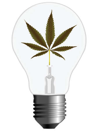 cannabis energy light bulb against white background, abstract art illustration illustration