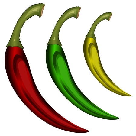 pungent: peppers isolated on white background, abstract vector art illustration
