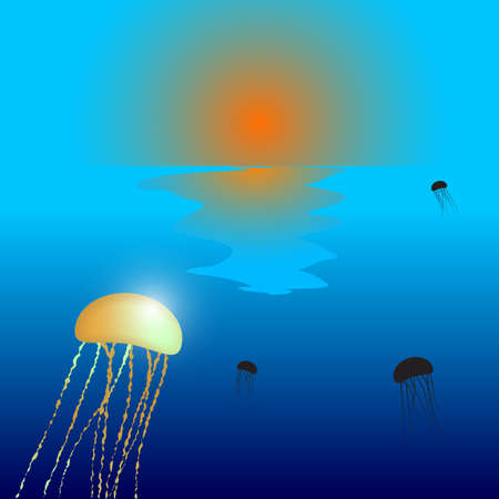 jellyfish sunset composition, abstract vector art illustration; image contains transparency