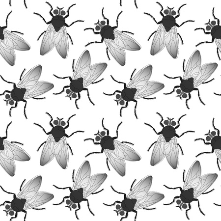 musca domestica: fly seamless texture, abstract pattern,  art illustration, image contains transparency