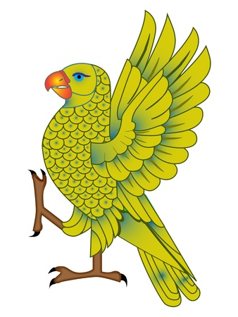 colorful parrot against white background, art illustration Illusztráció