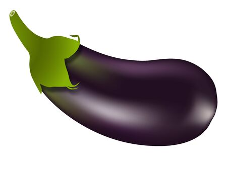 eggplant against white background, abstract vector art illustration, image contains gradient mesh