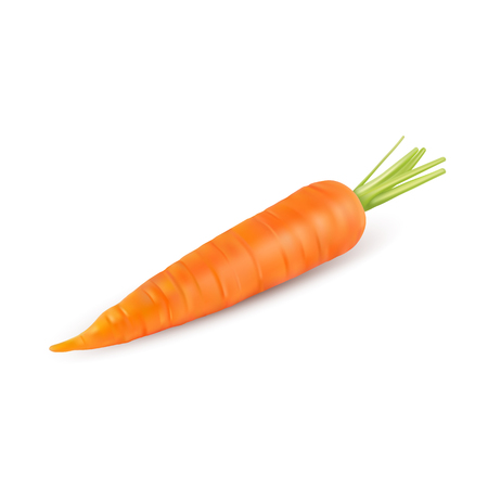 carrot isolated on white background Illusztráció