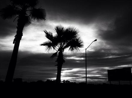 A black and white hidden sun.