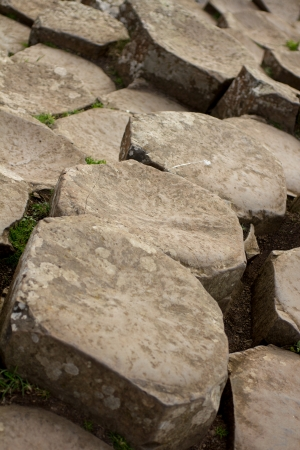 Giants Causeway - Rocks
