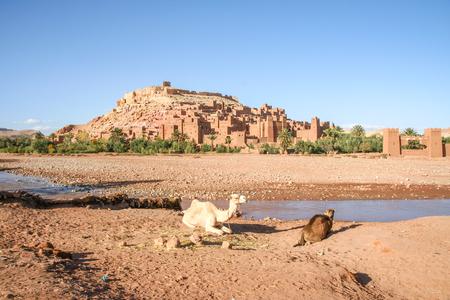 the world cultural heritage: Kasbah Ait Benhaddou - Ouarzazate Morroco