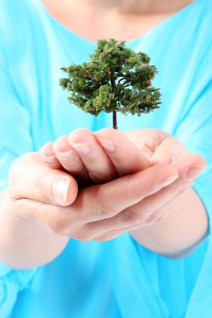 respeto: Respetar el verde Una mujer sostiene en las manos pequeño árbol