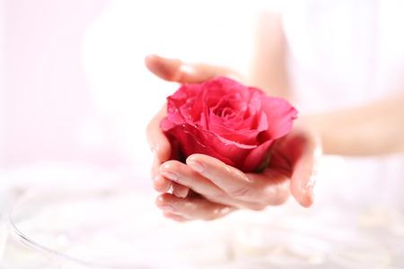 mujer con rosas: Rosa roja, un s�mbolo de la belleza