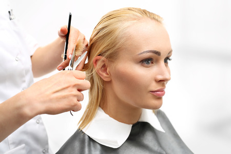 haircut: In the hair salon, haircut