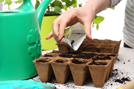 watering garden: Pot peat, natural crops Stock Photo