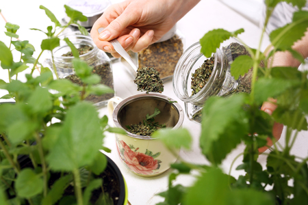 Herbal medicine, herbal tea. natural blend of herbs