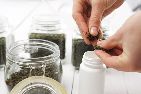 herbalist: treatment with herbs
