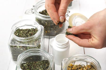 herbolaria: Hierbas, remedios naturales