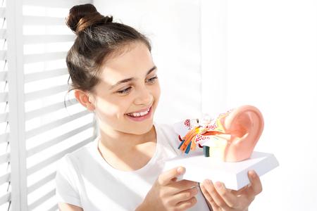 Construction ear anatomy of the ear.