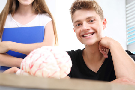 schoolroom: Teen on anatomy lesson. A group of school friends on anatomy lesson. Stock Photo