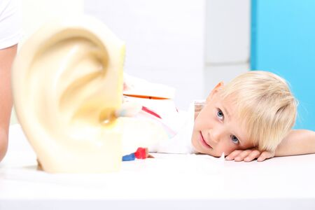 schoolroom: biology lesson. The organ of hearing, the construction of the ear. Stock Photo