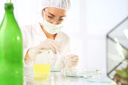 modified: Laboratory grafting plants. Genetically modified plants.
