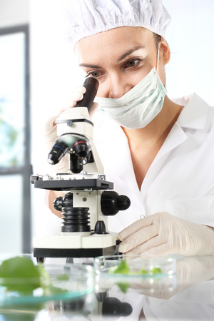Laboratory testing plant samples. Biotechnologist examine samples of plant under microscope
