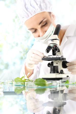 analytical chemistry: Laboratory tests. Biotechnologist examine samples of plant under microscope Stock Photo