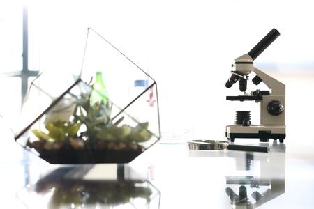 analytical chemistry: Analytical laboratory.