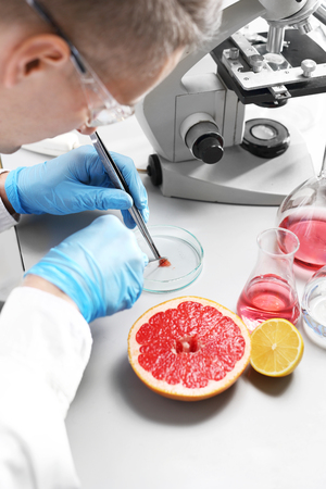 Food biotechnology. The laborer examines a fruit sample under a microscope.