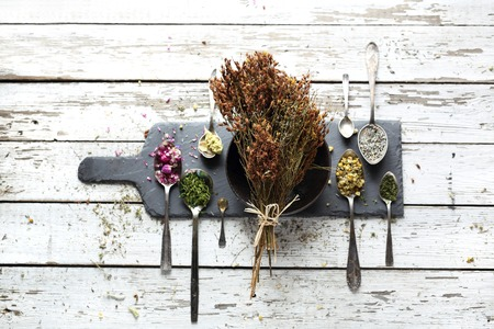 Herbery, St. Johns wort. Natural medicine, herbal medicine