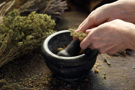 Herbalist. The woman prepares medicinal herbal mixtures.