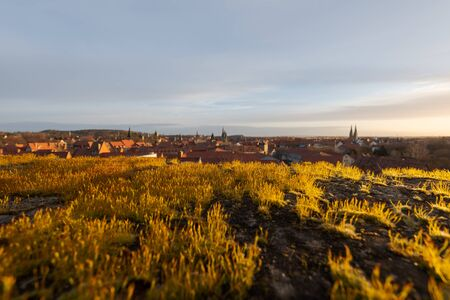 View over the historic old town of Quedlinburg blurred in background focus on moss in foreground