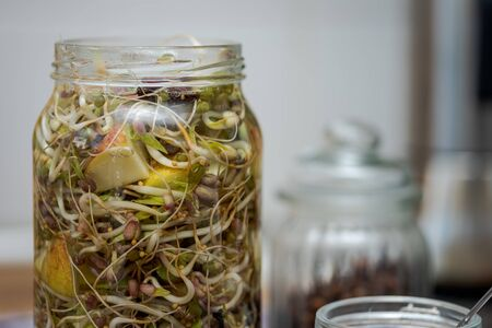 Preparing different sprouts mixed with pieces of apple for fermentation in glass jar at home 写真素材