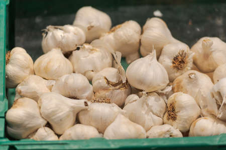 Unpacked loose garlic bulbs in green plastic box on display in organic super market Banco de Imagens