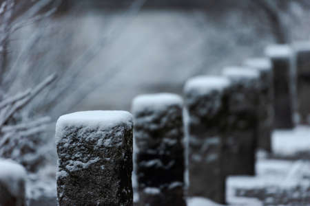 Row of small snow capped stone posts on street in winter Banco de Imagens