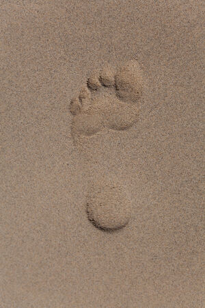 adult footprint: Footprint of the left foot of an adult in the sand Stock Photo