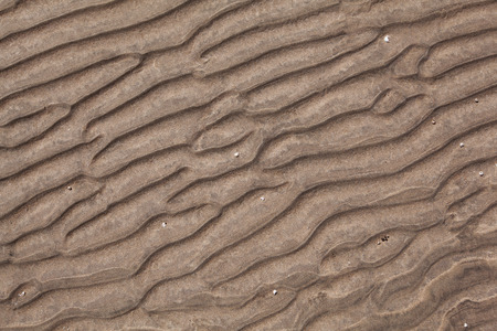 Wavy Pattern of the sandy ocean floor at low tide with striking structure photo