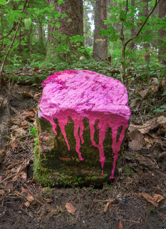 marked down: A boundary stone in the forest marked with pink color