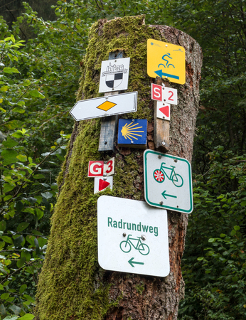 cycleway: Numerous signs for trails and cycling tours on a sawed-off tree trunk in the forest, taken in the Black Forest, Germany, Europe.
