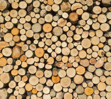Woodpile with round firewood from small tree trunks and thick branches in the sunlight