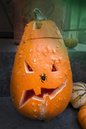 ovoid: Elongated, high, carved Halloween pumpkin with painted cross spider