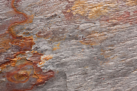 Abstract pattern of a stone slab in silver-gray and rust. The slab is part of a wall covering in La Gomera, Spain. Banco de Imagens