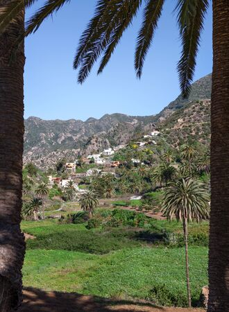 vallehermoso: Look through two palm trees at the village Banda de las Rosas, Approximately 3 km south of Vallehermoso in the green north of the Canary Iceland of La Gomera, Spain.