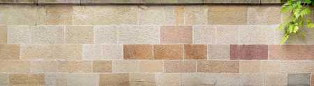 wall covering: Panorama of a stone wall of big, beige and brown stones with textured surface, bright joints and wall covering. On the right a branch of a tree extends into the picture.