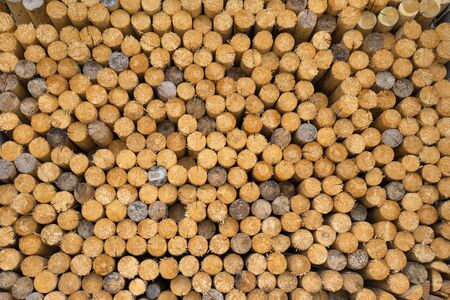 woodpile: Closeup of a woodpile with stacked, equal, mainly  brown and a few gray spars