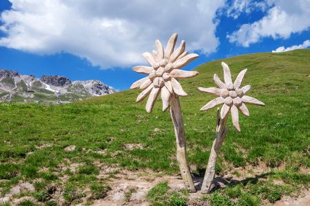 woodcraft: Edelweiss sculpture above Oberstdorf in the Alps Allgu