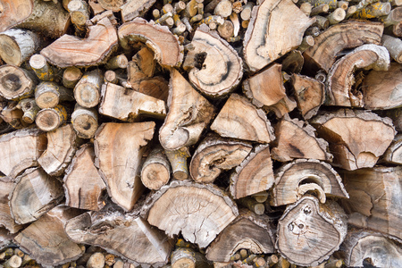 Old weathered woodpile Foto de archivo