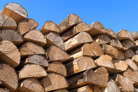 woodpile: Woodpile with half cut tree trunks