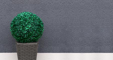 boxwood: Artificial boxwood ball - panorama