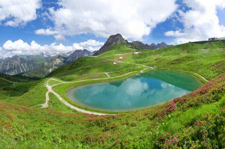 allgau: Allgau Alps - Lake Riezler Alpsee with alpine roses