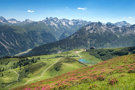 allgau: Alpine roses in the Allgau Alps with lake Schlappoltsee Stock Photo