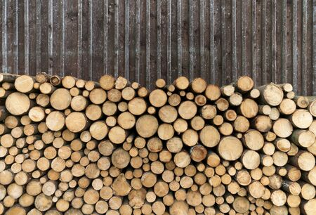 woodpile: Woodpile in front of a board wall Stock Photo