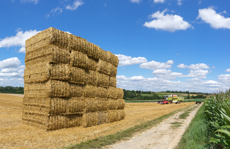 Stacked straw bales on a field